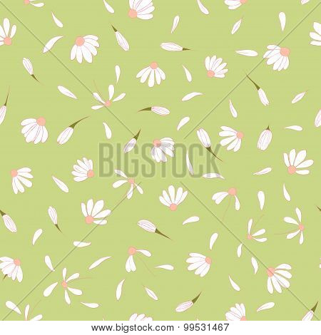 Seamless pattern with cute chamomile flowers on light green background