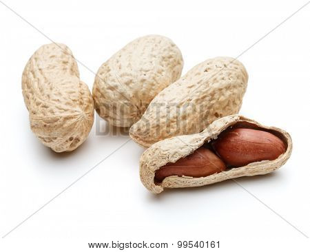peanut pod or arachis isolated on white background cutout
