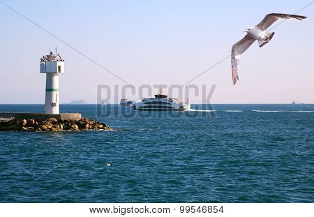 Lighthouse In Bosporus