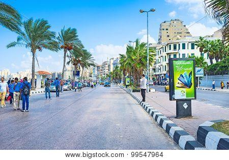 Walk In Alexandria
