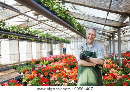 Portrait of a gardener in a green house