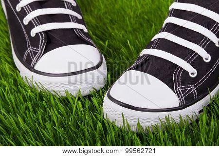 Sneakers On The Green Grass