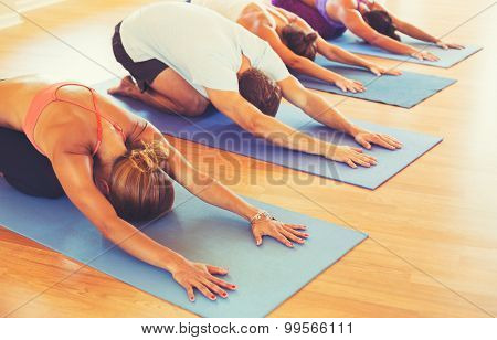 Yoga Class, Group of People Relaxing and Doing Yoga. Child's Pose. Wellness and Healthy Lifestyle.