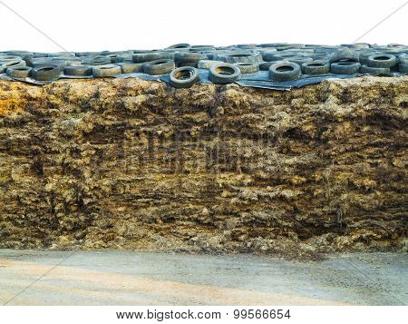 heap of manure covered with old tires