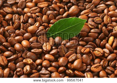Detail of roasted coffee beans