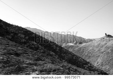 Zhangye Danxia National Geological Park  Monotone Image, Gansu Province, China