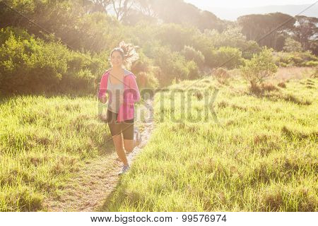 Fit woman jogging in the forest on a sunny day