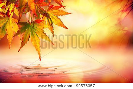 Autumn spa background with red leaves on water
