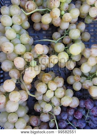 Close-up Of Ripe Grapes In Box