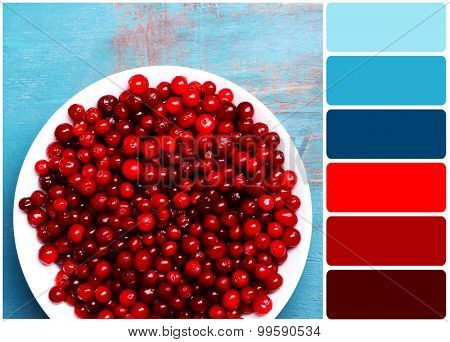 Cranberries in bowl on wooden background and palette of colors