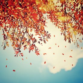 pic of cloudy  - Beautiful vintage autumn background - JPG