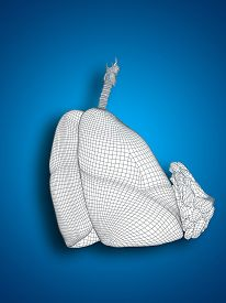 pic of respiratory  - Concept or conceptual anatomical human woman 3D wireframe mesh respiratory system  with lungs and breasts on blue background - JPG