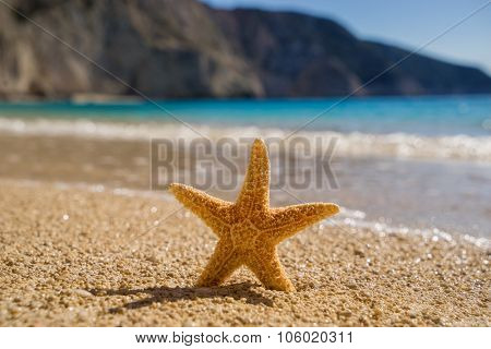 Starfish on Porto Katsiki beach on Ionian Sea Lefkada, Greece