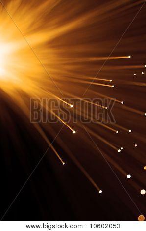 Warm Fibre Optic Burst.