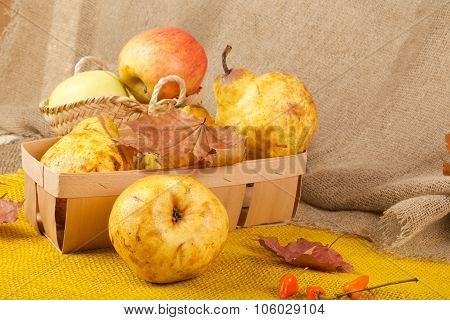 Yellow Pears And Pink Apples