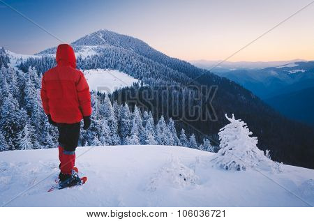 Winter landscape. Tourist in snowshoeing in red jacket standing on the hill. Christmas view. Carpathians, Ukraine, Europe. Low contrast. Color toning