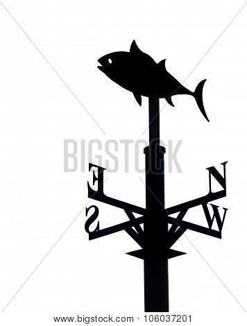 Weather vane isolated
