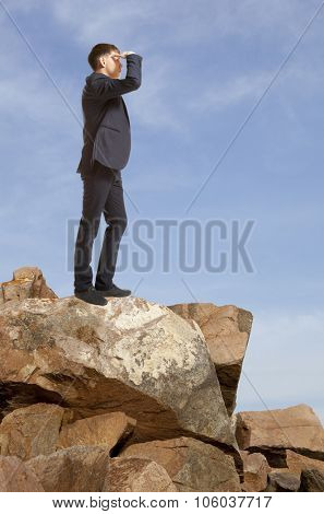 Businessman looking to the landscape. Business concept