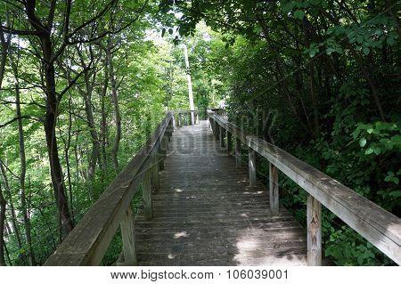 Boardwalk on the Bluff