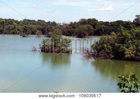 Lake Renwick