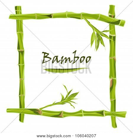 Hand-drawn green bamboo frame with space for text