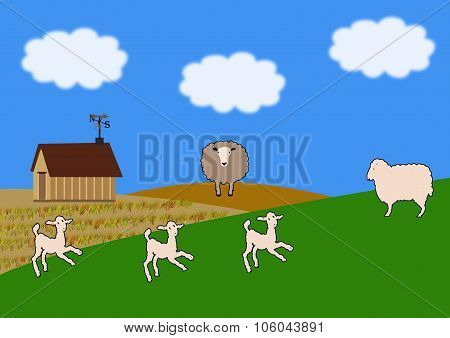 Farmstead With Crops Growing And Sheep