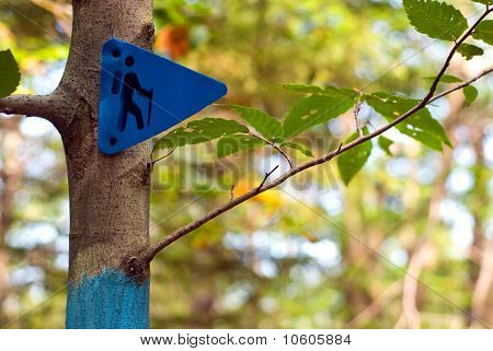 Hiking Trail Marker On A Tree In A Forest