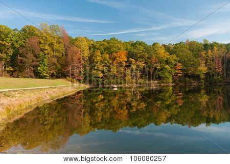 Panoramic View At The Lake And Forest In A Fall