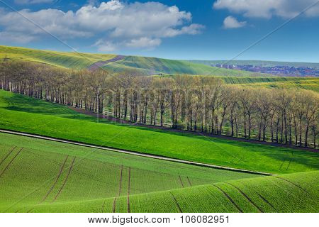 Fresh Landscape of fields in countryside - different colors of hills and blue sky, spring season
