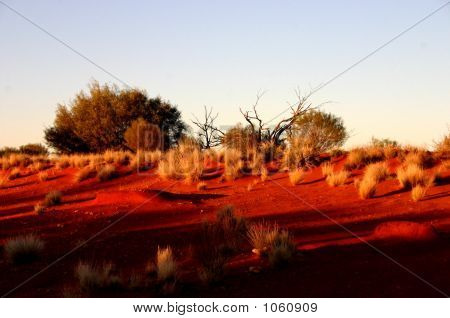 Australien 274