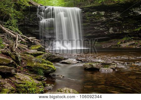 Waterfall In Ricketts Glen State Park, Pennsylvania