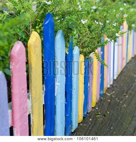 Colourful Wood Fence In Small Garden