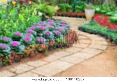 Blur Background And Walkway In Garden