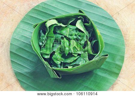 Green Noni Leaf On Banana Leaf
