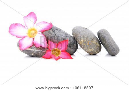 Zen And Spa Stone With Frangipani Flowers Over White Background