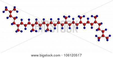 Molecular Structure Of Lycopene