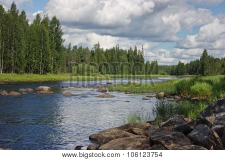 River and fir forest in Karelia, Russia