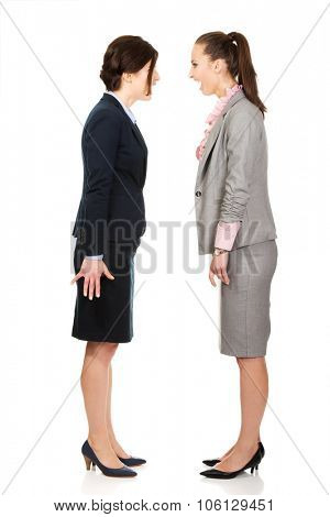 Two angry businesswomans screaming at each other.