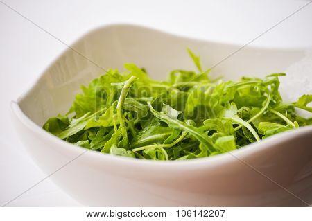 Salad rocket - Rucola