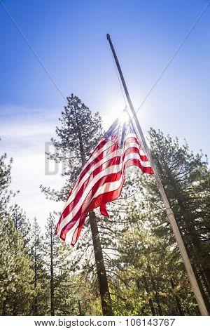 Dramatic Half Mast American Flag Among Trees.