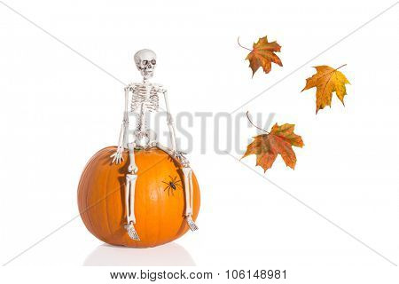 Skeleton sitting on pumpkin with autumn leaves