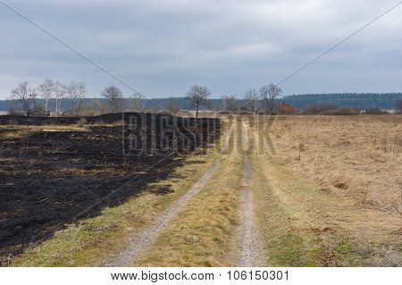 Spring landscape with earth road and burnt grass