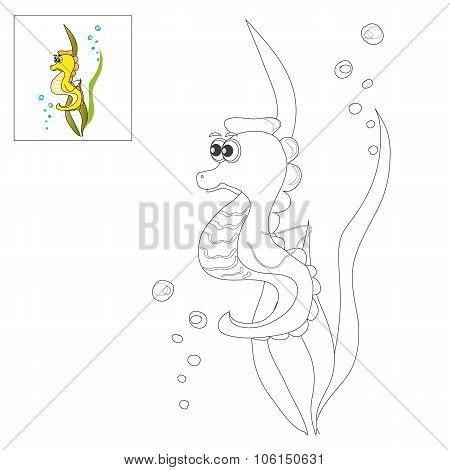 Picture For Coloring - Sea Horse.