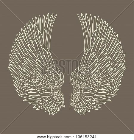 vector pair of angel wings in contour