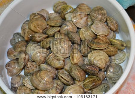 Crude clams