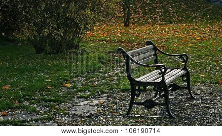 A bench in an autumn landscape