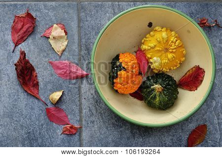 Three Small Pumpkins In A Bowl