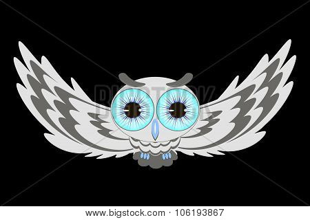 Flying Owl Illustration