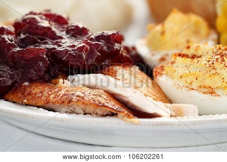 Thanksgiving Turkey With Cranberry Sauce