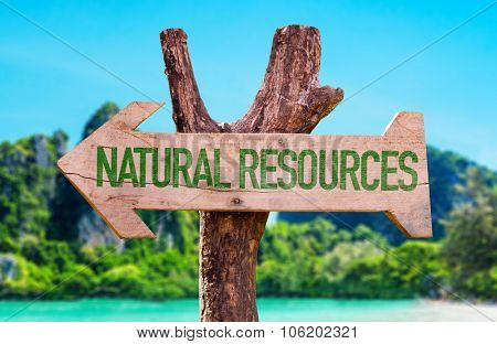 Natural Resources arrow with beach background